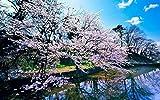 Groes Holzpuzzle 1000 Stck Spring Cherry Pattern Familienfreundliche Interaktive...