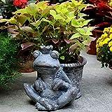 FESSLAND Empfindliche Garten Handwerks Dekoration Hof Frog Prince Blumentopf im Freien Rasen Villa...