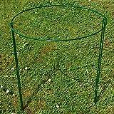 LAMF 2 Stück Pflanzenstützring halbrund Metall für den Garten, Rahmen Drahtreifen für...